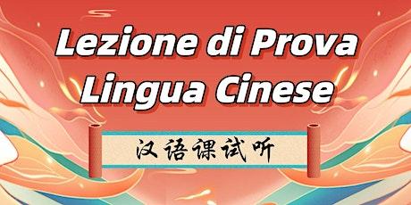 Lezione di Prova - Cinese Livello Principiante (HSK1) biglietti