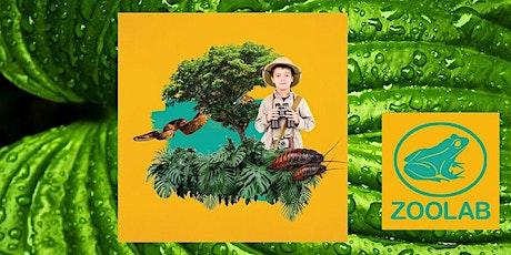 Rainforest Adventurer - Zoolab tickets