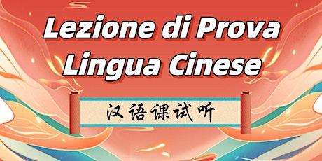Lezione di Prova - Cinese Livello Intermedio (HSK3) biglietti