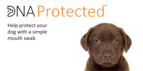 Doggie DNA Protected Event - Cirencester Park tickets