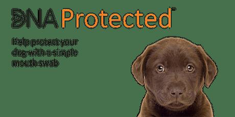 Doggie DNA Protected Event - Lido, Cheltenham tickets
