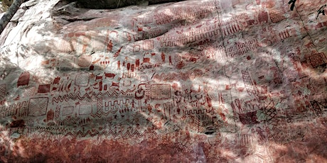 Connected Communities: Initial results of rock art surveys in the Serranía tickets