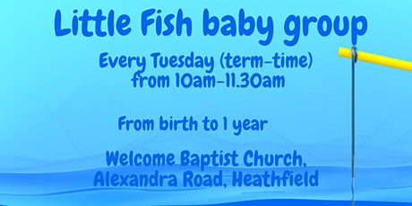 Little Fish baby group tickets