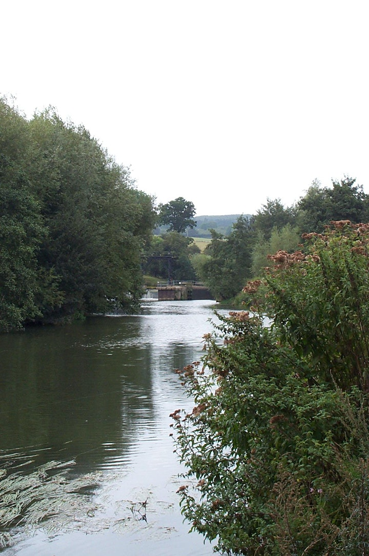 Country Park and River Medway Tow Path Clean Up image