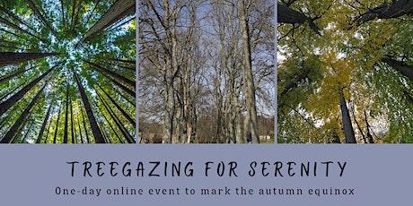 Treegazing For Serenity entradas