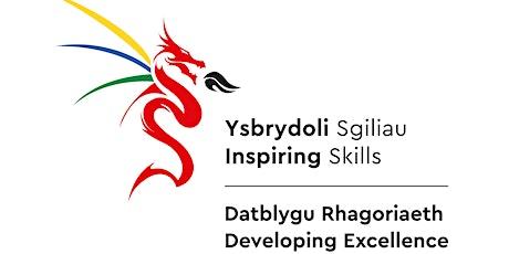 Developing Excellence - Cyber / Datblygu Rhagoriaeth -  Seiber tickets