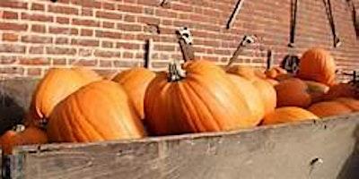 NORWICH – White House Farm Pumpkin Pick