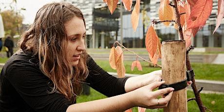 Birley Orchard Workshop (Autumn) tickets