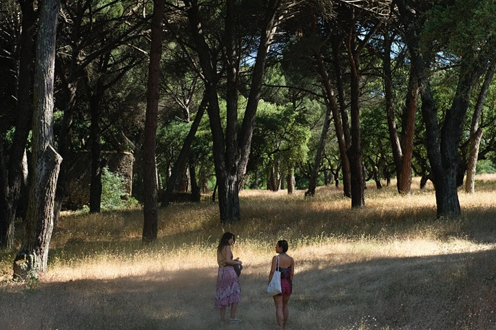 Under The Art Tree - Art & Wellbeing in Arrábida image
