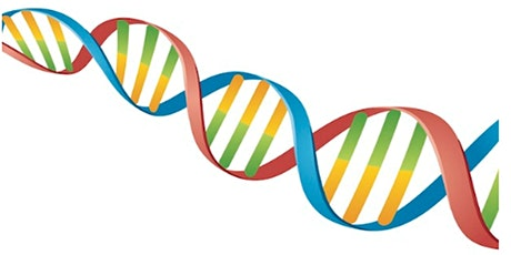 Getting the most out of your Ancestry DNA test. Hilary Hartigan tickets