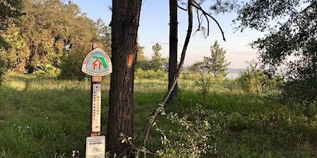 Rodman Dam/Ocala National Forest Trail Maintenance 2021_Nov 1st Workday tickets