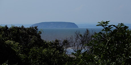 Ian Jelf's (Virtual)  Tour of the Mysterious Island of Steep Holm tickets