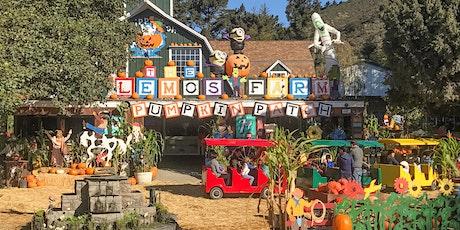 10am - 2pm November Pumpkin Patch Passes tickets