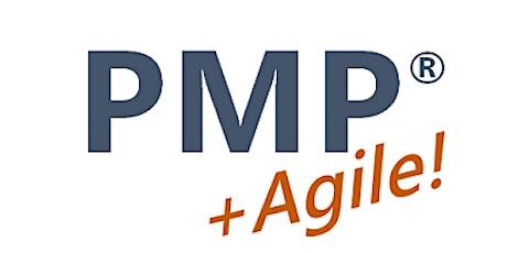 PMP + Agile Course   Curso Project Management + Agile   Puerto Rico tickets