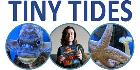 Tiny Tides Storytime tickets
