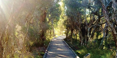 Spring Bushwalk at Piney Lakes tickets