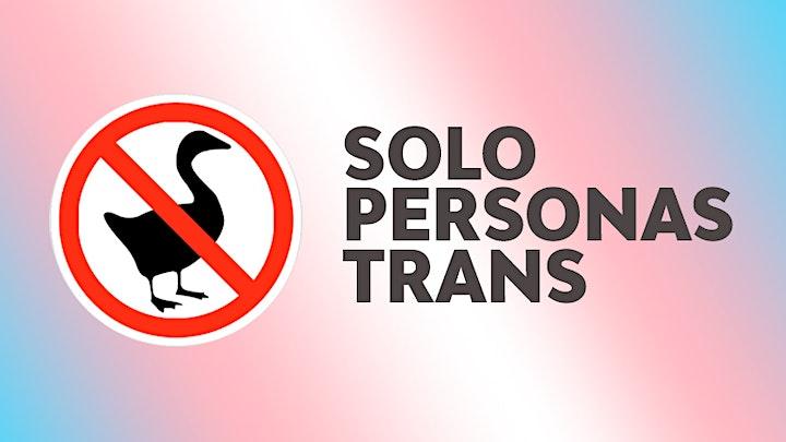 Imagen de Taller de crowdfunding para gente trans y trans no binaria