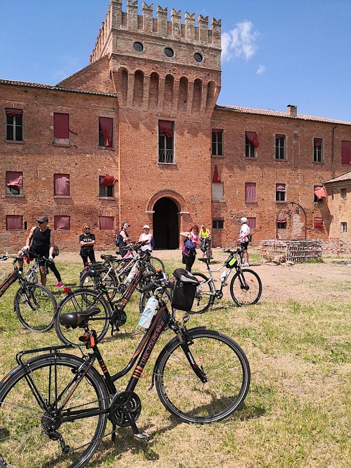 Immagine Gita in bicicletta alla scoperta di Argenta