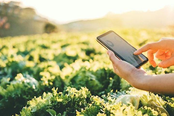 Virtual Forum: A Spotlight on Hartpury's Digital Innovation Farm image