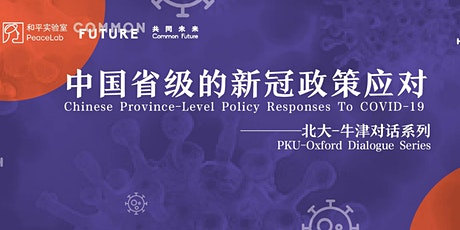 Chinese Province-level Policy Responses to COVID-19 tickets