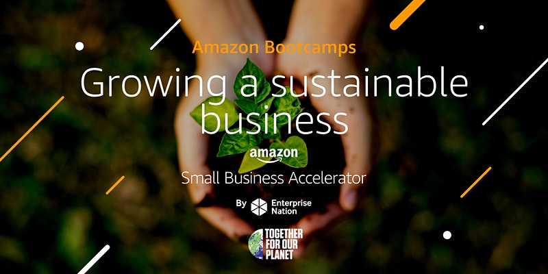 Amazon Bootcamp: Growing a sustainable business
