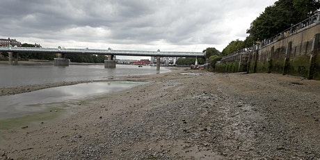 Thames Foreshore Archaeology Guided Walk: Putney tickets