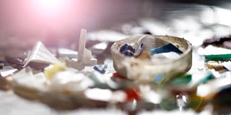 Marine litter: Are there solutions to this global environmental challenge? tickets