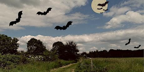 An Evening Bat Walk tickets