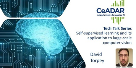Self-supervised learning and its application to large-scale computer vision tickets