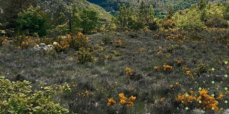 Nature Sensible Villeperdrix - Aprés-midi découverte billets