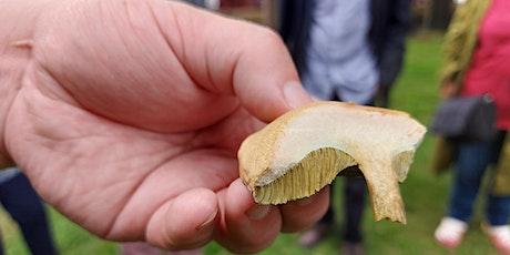 Fungi Walk tickets