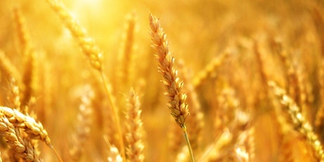 The UK Agricultural Landscape, Current and Future Challenges - Arable tickets