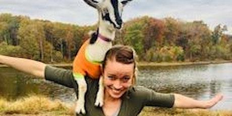 Fall Fest Baby Goat Yoga tickets