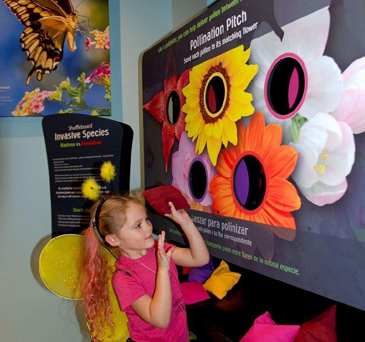 Ken Seiling Waterloo Region Museum Presents: Amazing Pollinators! image