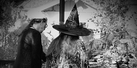 Interview with Witches-Part 1- The Indigenous Witch entradas