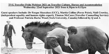 TVG Webinar on Traveller Culture, Horses and Accommodation tickets