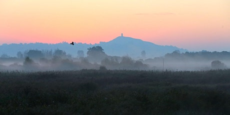 The Wildlife of the Somerset Levels tickets