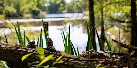 Lake Erie Guardians - Wetland restoration event tickets