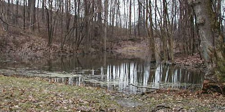 Lake SWCD Backyard Restoration Workshop Series: Pond Management Workshop tickets