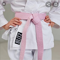 Pink Belt Karate Seminar in Aid of Cancer Awareness and Prevention tickets