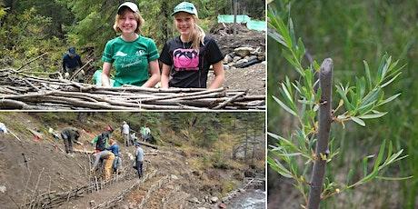 Trail Crew Bioengineering Basics - 'Lunch and Learn' Webinar tickets