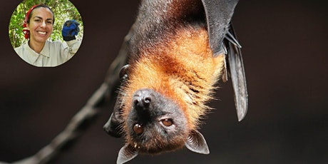 Bat-Plant Interactions and their Vulnerability to Environmental Change tickets