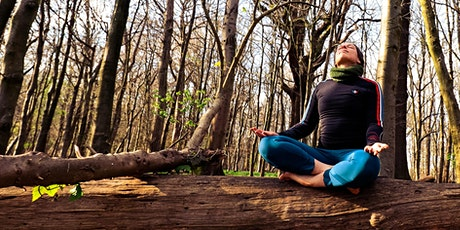 Forest Bathing and Yoga  at Stanmer Park - Brighton tickets