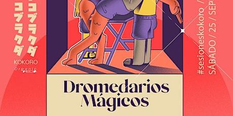 #SesionesKokoro: Dromedarios Mágicos tickets