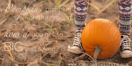 Knox Pumpkin Farm & Market 2021 tickets