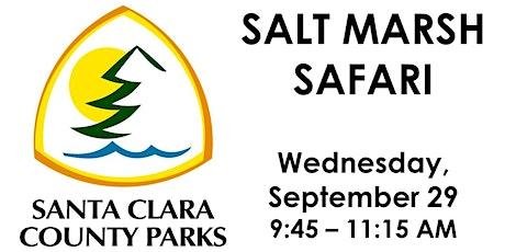 Salt Marsh Safari tickets