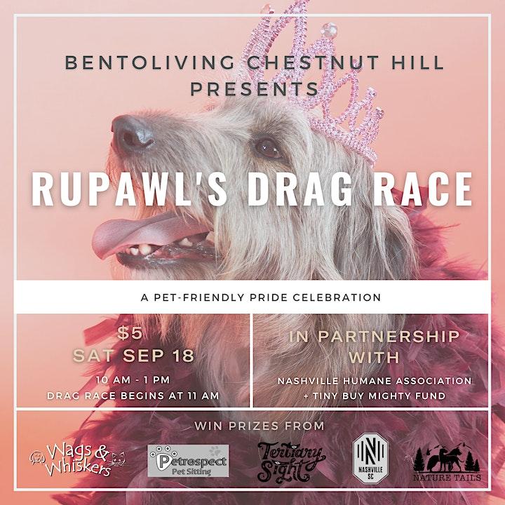 RuPawl's Drag Race: A Pride Event benefitting Nashville Humane Association image