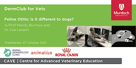 DermClub for Vets - Feline otitis:  is it different to dogs? tickets