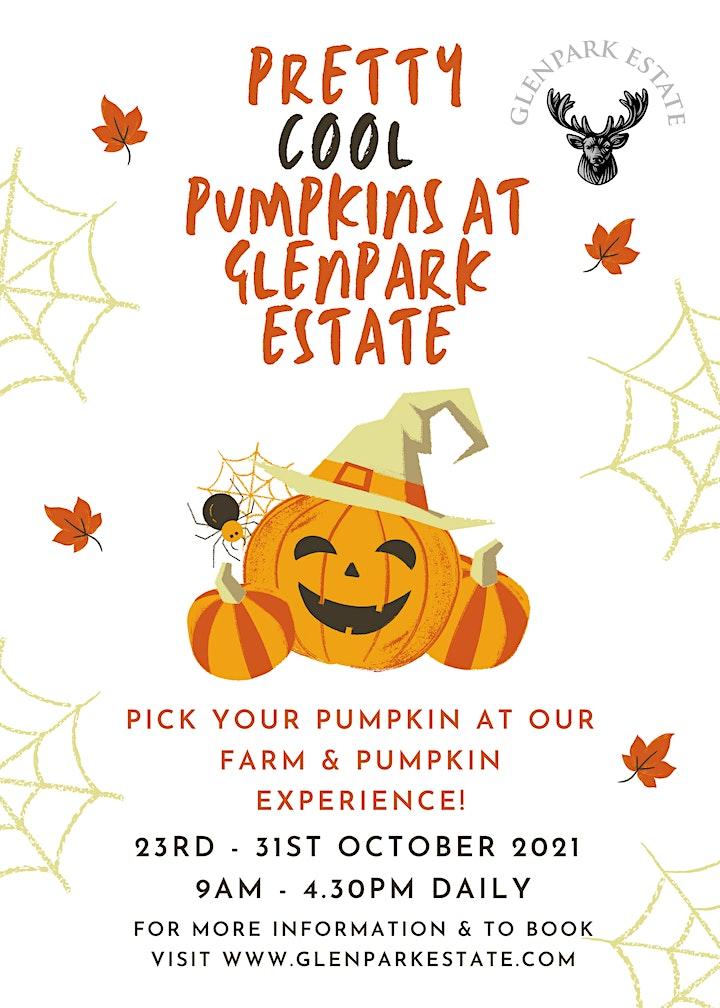 Glenpark Estate Pumpkin Experience image