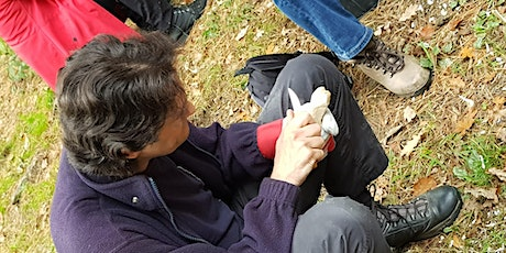 Ingrebourne Wood Whittling a Wizard's Wand tickets